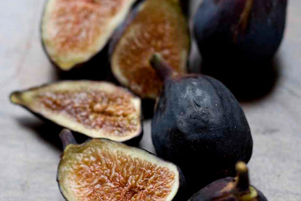 Figs__1_of_1_