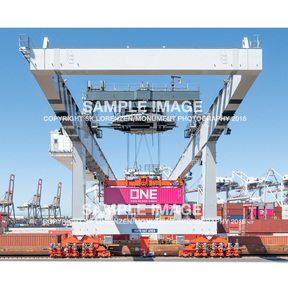 One_crane_sample_image